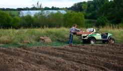Ami farming RRF