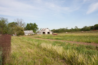 Buller Family Farm - barn and field