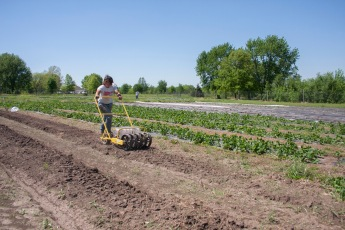 Pat & Rachel's Garden - farm manager seeding