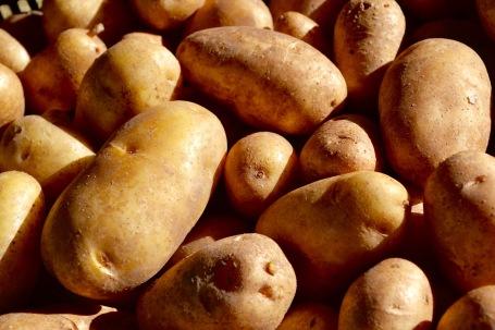 potatoes MOTM
